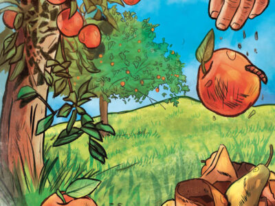 La mela e il lombrico